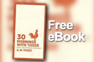 eBook - Tozer