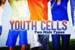 youth cells