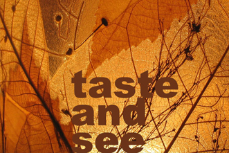 Song_Package___Taste_and_see_579378331.jpg