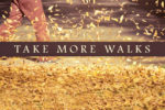 article_images/8.15.PastorsTakeMoreWalks_420481286.jpg