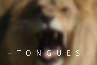 article_images/911Tongues_133095146.jpg