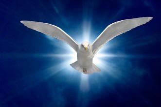 article_images/baptism_962984748.jpg