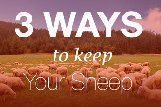 article_images/keep_sheep_small_237120899.jpg